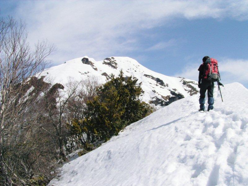 yamada-05.jpg